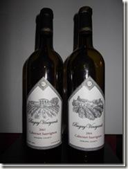 DSCF0455 thumb CORKSCREWs REVIEWs Top American Cabernet Sauvignon Of 2010
